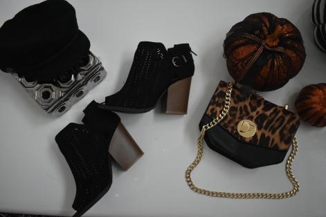 accessory pic 2