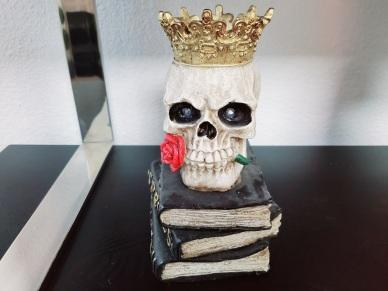 skull on books final